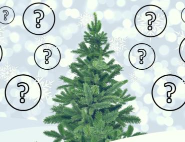 Albero di Natale – 10 consigli su come addobbarlo